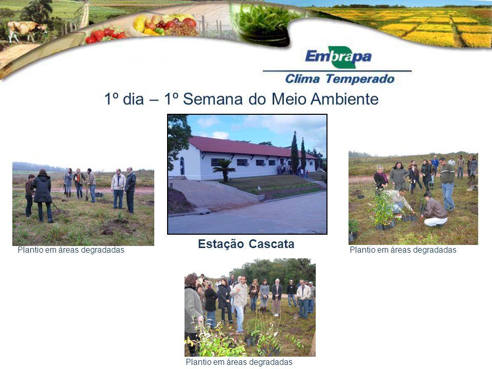 1º dia – 1º Semana do Meio Ambiente Estação Cascata Plantio em áreas degradadas