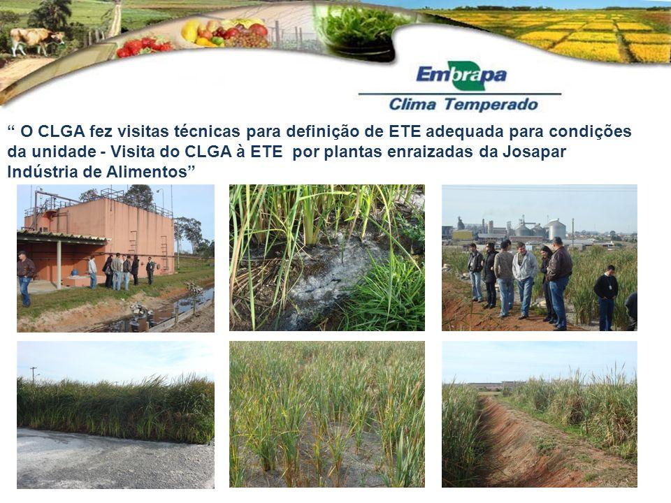 O CLGA fez visitas técnicas para definição de ETE adequada para condições da unidade - Visita do CLGA à ETE por plantas enraizadas da Josapar Indústri