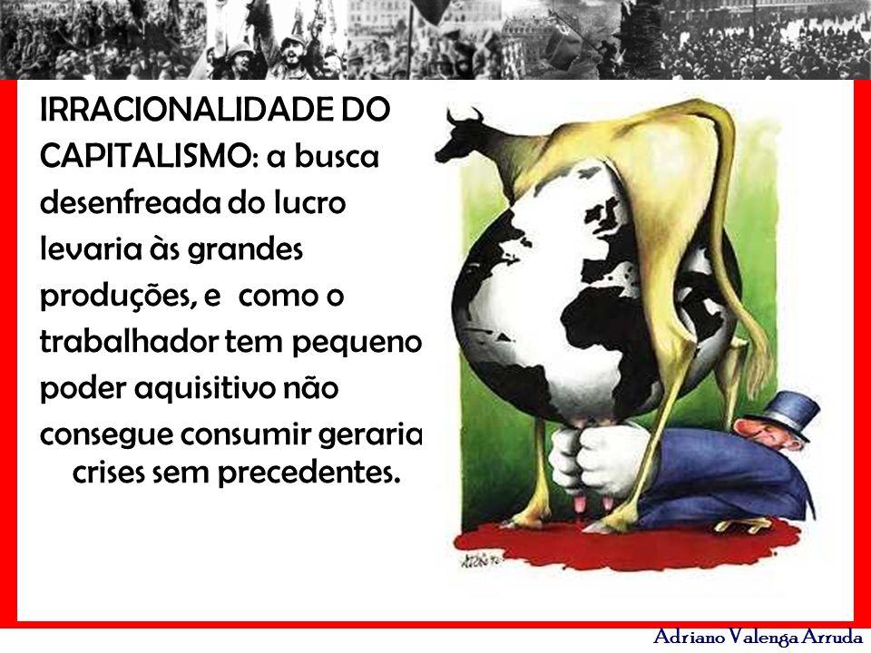 Adriano Valenga Arruda IRRACIONALIDADE DO CAPITALISMO: a busca desenfreada do lucro levaria às grandes produções, e como o trabalhador tem pequeno pod