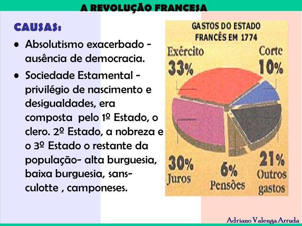 A REVOLUÇÃO FRANCESA Adriano Valenga Arruda CAUSAS: Absolutismo exacerbado - ausência de democracia. Sociedade Estamental - privilégio de nascimento e