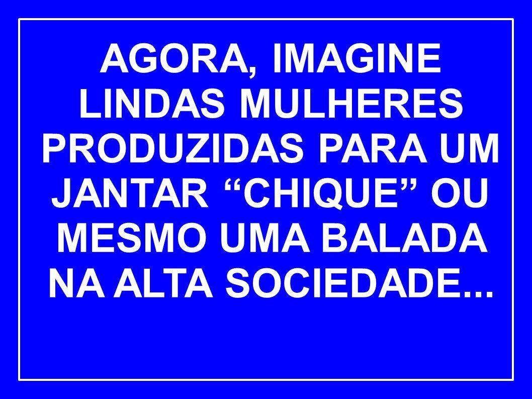 AGORA, IMAGINE LINDAS MULHERES PRODUZIDAS PARA UM JANTAR CHIQUE OU MESMO UMA BALADA NA ALTA SOCIEDADE...