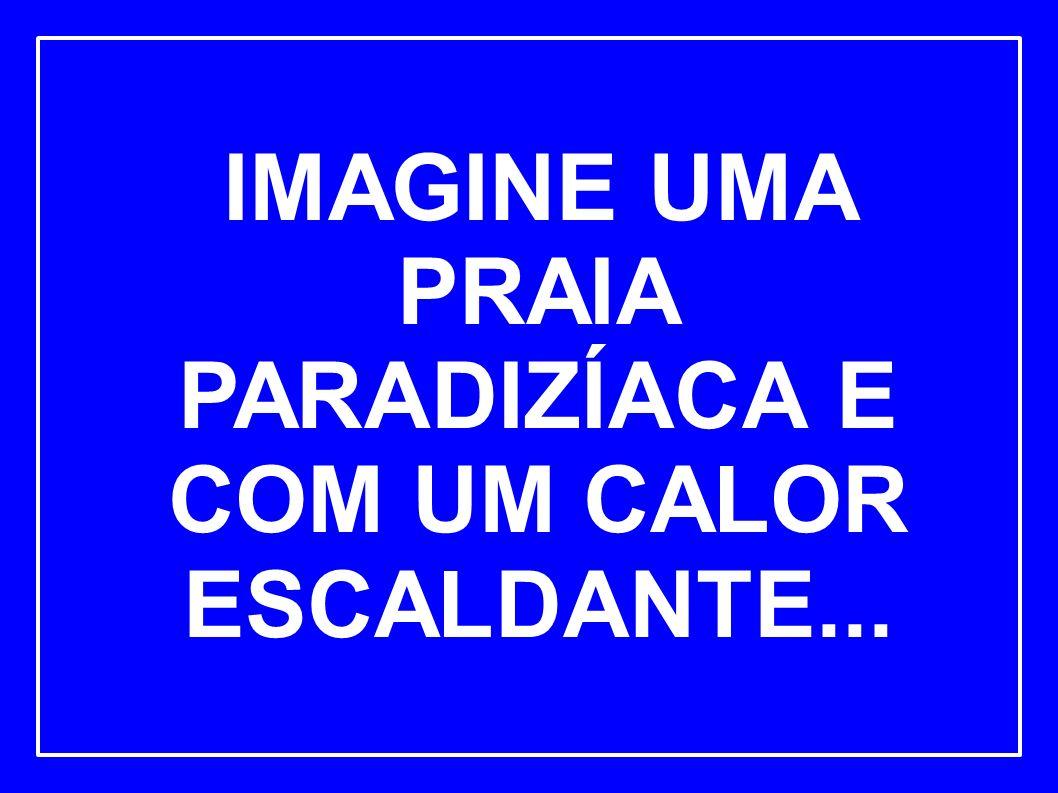 IMAGINE UMA PRAIA PARADIZÍACA E COM UM CALOR ESCALDANTE...
