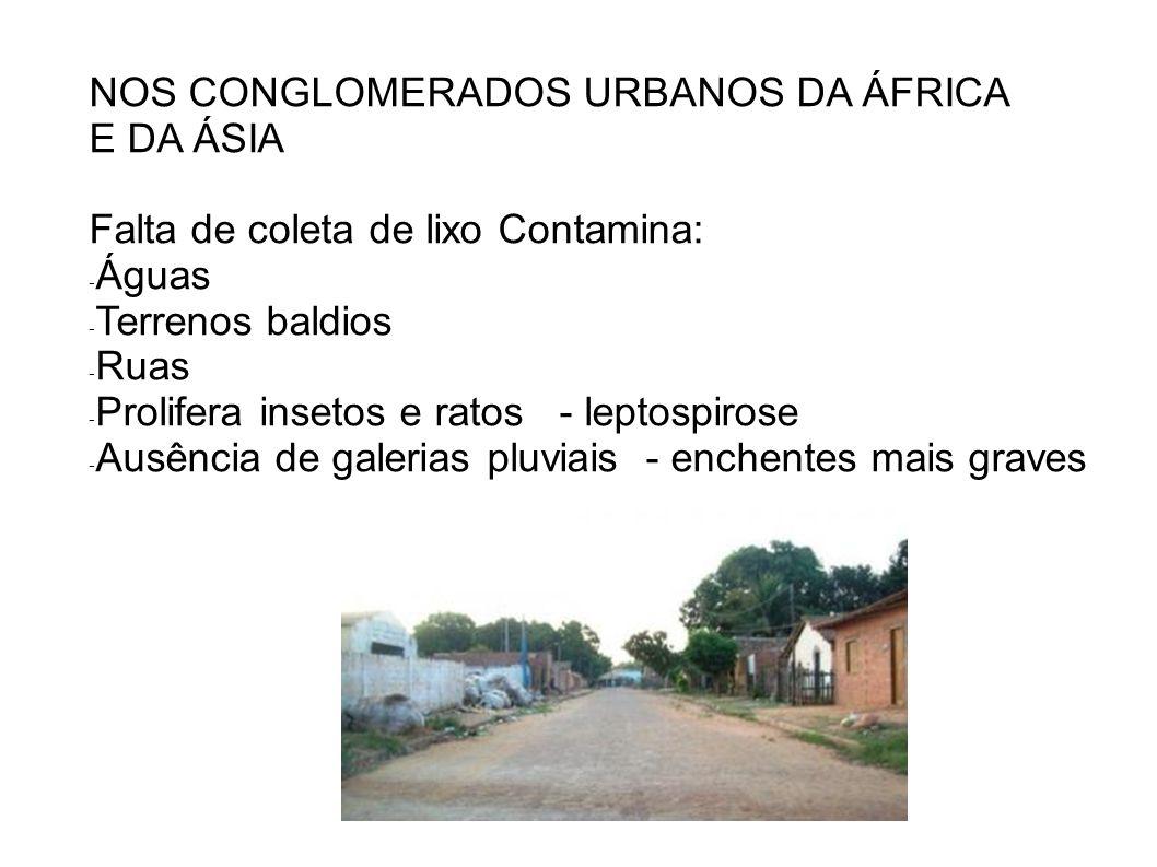 NOS CONGLOMERADOS URBANOS DA ÁFRICA E DA ÁSIA Falta de coleta de lixo Contamina: - Águas - Terrenos baldios - Ruas - Prolifera insetos e ratos - lepto