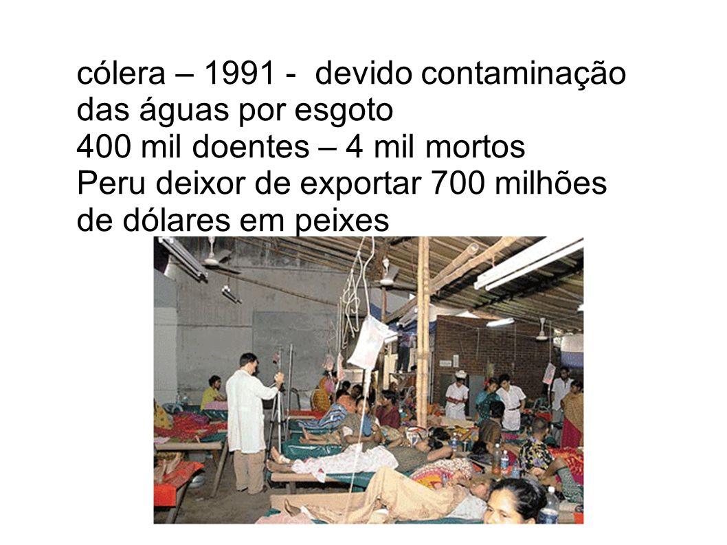 cólera – 1991 - devido contaminação das águas por esgoto 400 mil doentes – 4 mil mortos Peru deixor de exportar 700 milhões de dólares em peixes