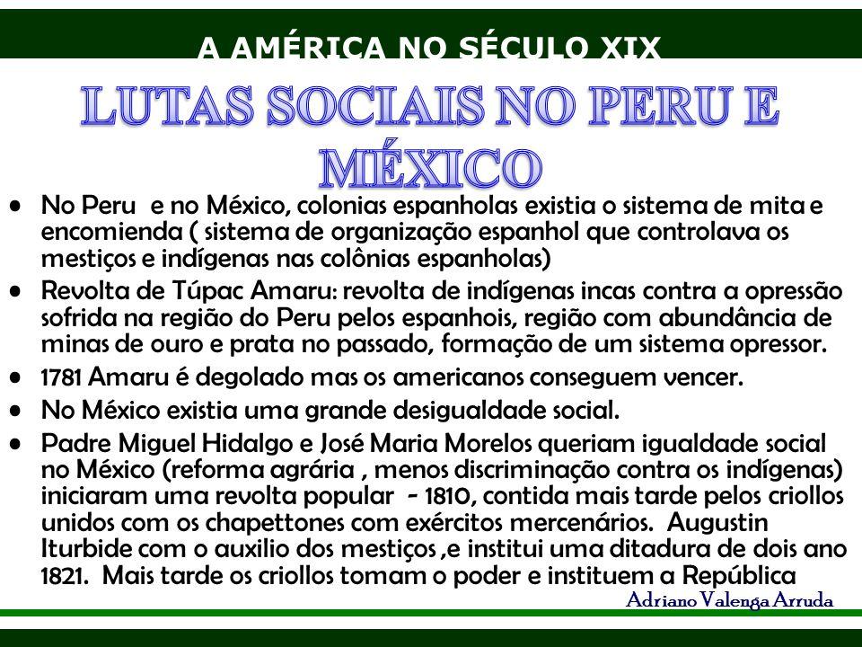 A AMÉRICA NO SÉCULO XIX Adriano Valenga Arruda No Peru e no México, colonias espanholas existia o sistema de mita e encomienda ( sistema de organizaçã