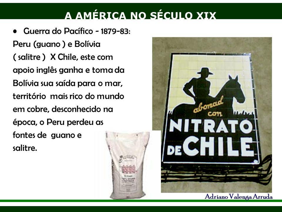 A AMÉRICA NO SÉCULO XIX Adriano Valenga Arruda Guerra do Pacífico - 1879-83: Peru (guano ) e Bolívia ( salitre ) X Chile, este com apoio inglês ganha