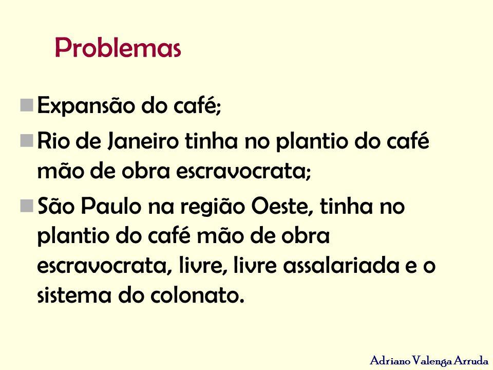 Adriano Valenga Arruda Os sistemas de imigração nos cafezais: PARCERIA (fracasso)COLONATO (sucesso) Primeiro sistema introduzido (1847).Oeste Paulista (por volta de 1870), subvencionada pelo governo.