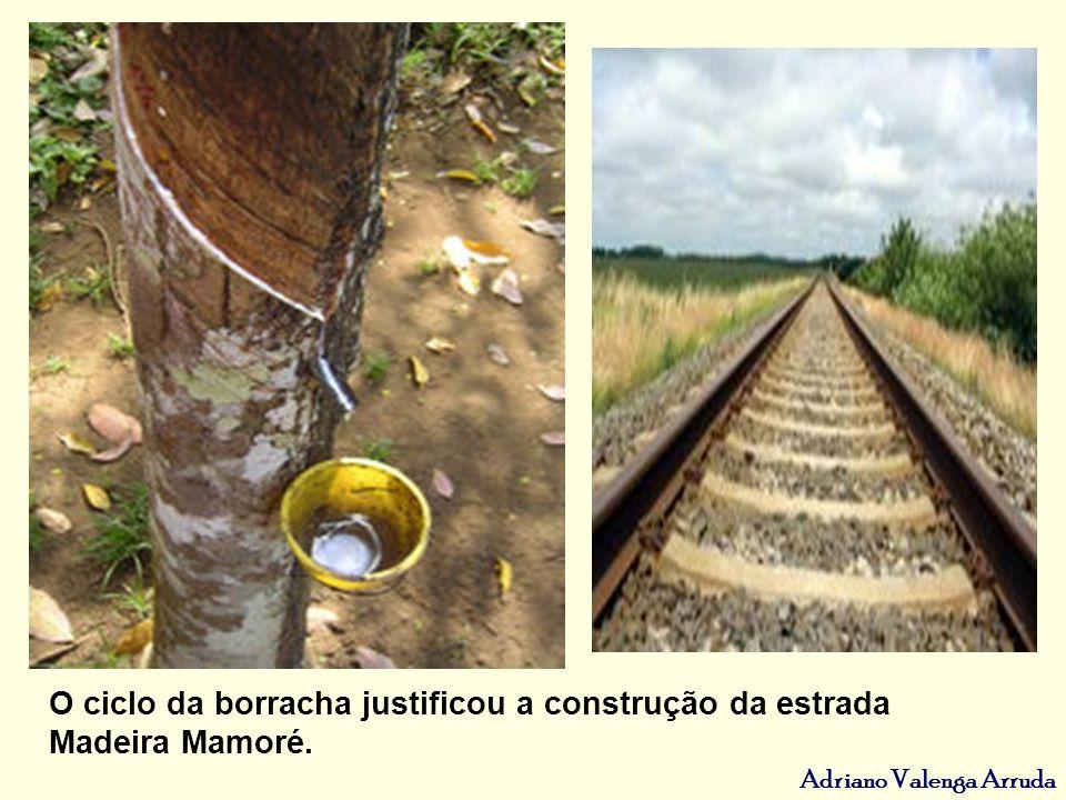 O ciclo da borracha justificou a construção da estrada Madeira Mamoré.