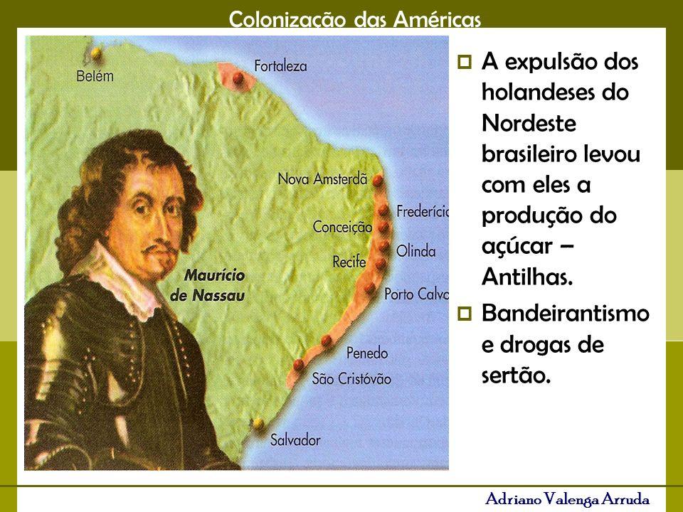 Colonização das Américas Adriano Valenga Arruda Fim do século XVII, os Bandeirantes descobrem ouro em MG, a pecuária desce para o Sul do Brasil.