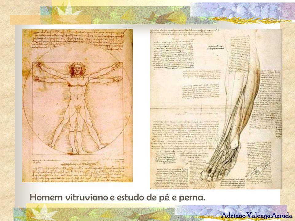 Adriano Valenga Arruda Homem vitruviano e estudo de pé e perna.