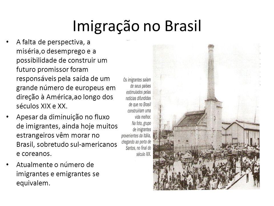 Imigração no Brasil A falta de perspectiva, a miséria,o desemprego e a possibilidade de construir um futuro promissor foram responsáveis pela saída de