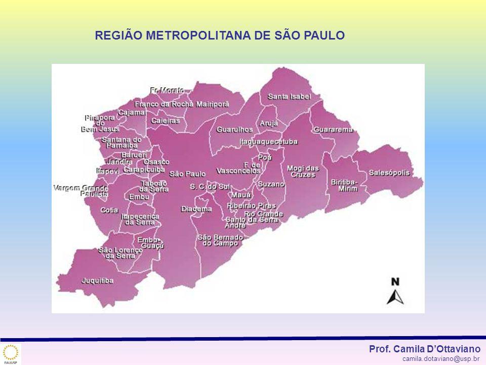 REGIÃO METROPOLITANA DE SÃO PAULO Prof. Camila DOttaviano camila.dotaviano@usp.br