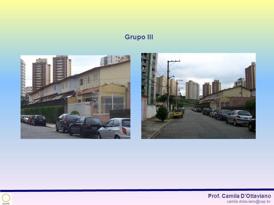 Grupo III Prof. Camila DOttaviano camila.dotaviano@usp.br