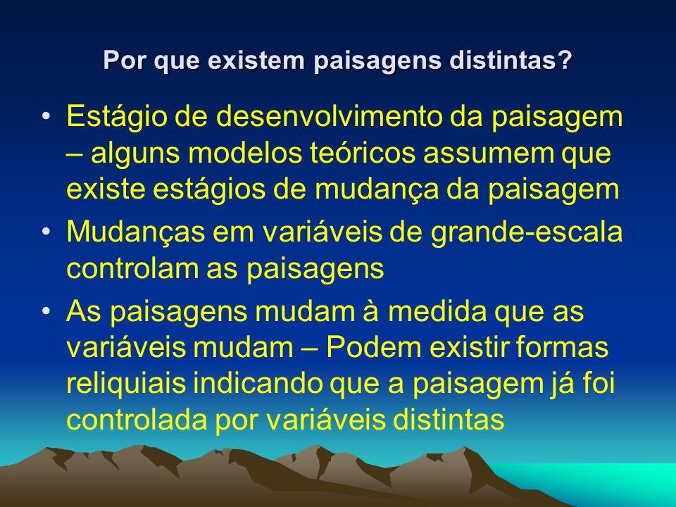 Por que existem paisagens distintas? Estágio de desenvolvimento da paisagem – alguns modelos teóricos assumem que existe estágios de mudança da paisag