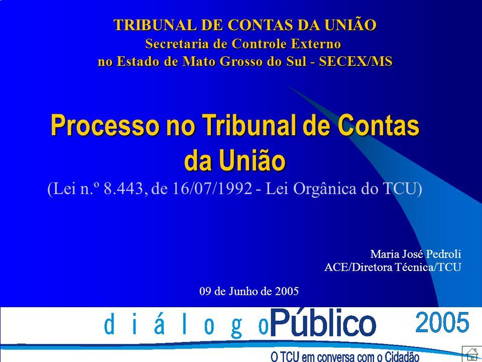 Processo no Tribunal de Contas da União (Lei n.º 8.443, de 16/07/1992 - Lei Orgânica do TCU) Maria José Pedroli ACE/Diretora Técnica/TCU 09 de Junho d