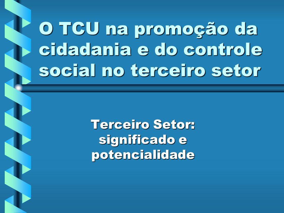 O TCU na promoção da cidadania e do controle social no terceiro setor Terceiro Setor: significado e potencialidade