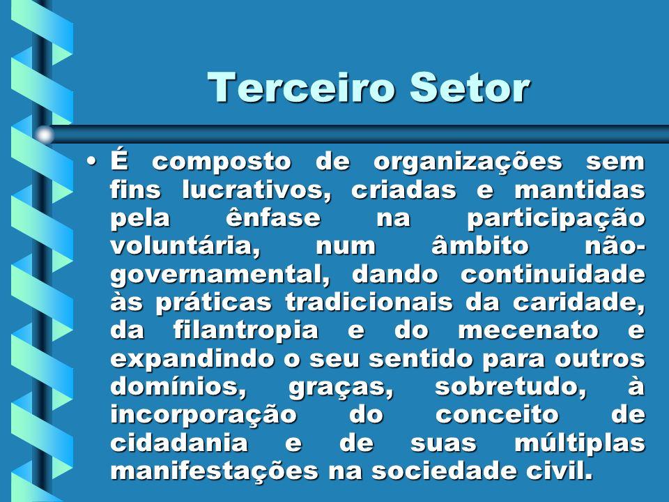 Dados sobre o Terceiro setor Em 1991, segundo dados do Ministério do trabalho, existiam mais de 200 mil organizações sem fins lucrativos no Brasil, empregando mais de 1milhão de pessoas.