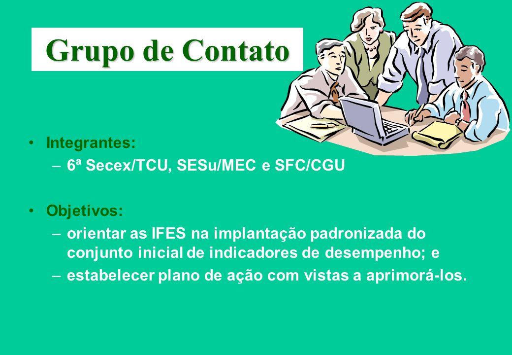 Grupo de Contato Integrantes: –6ª Secex/TCU, SESu/MEC e SFC/CGU Objetivos: –orientar as IFES na implantação padronizada do conjunto inicial de indicad