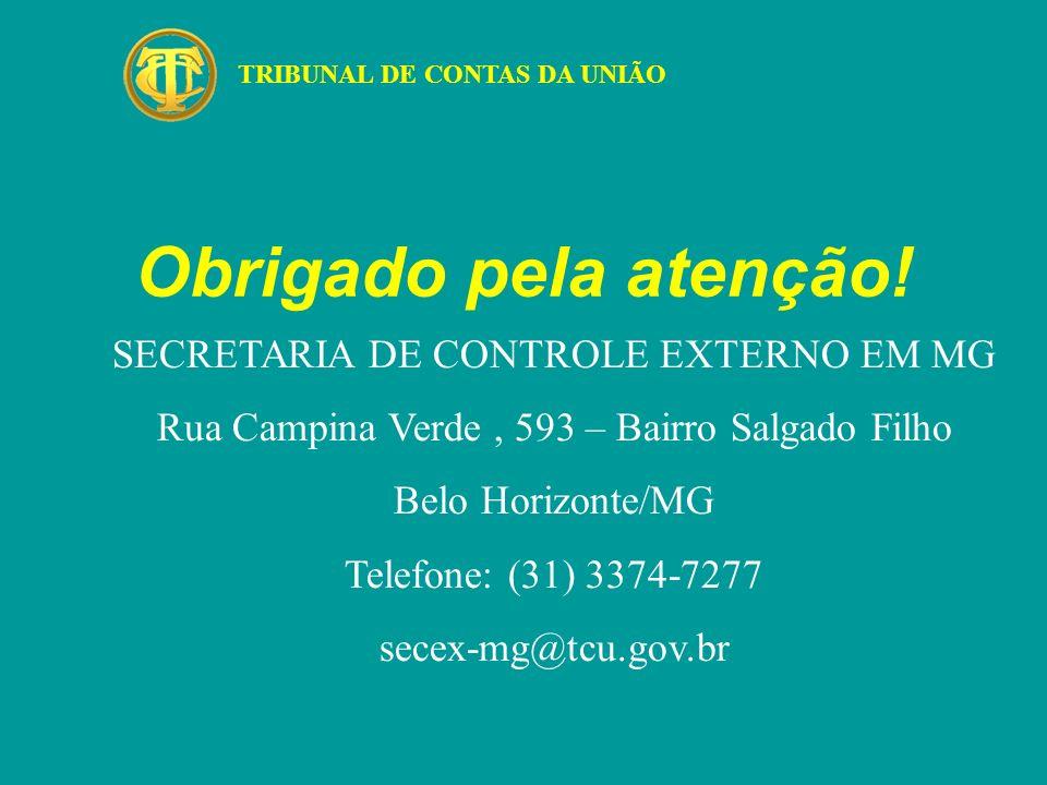 Obrigado pela atenção! TRIBUNAL DE CONTAS DA UNIÃO SECRETARIA DE CONTROLE EXTERNO EM MG Rua Campina Verde, 593 – Bairro Salgado Filho Belo Horizonte/M