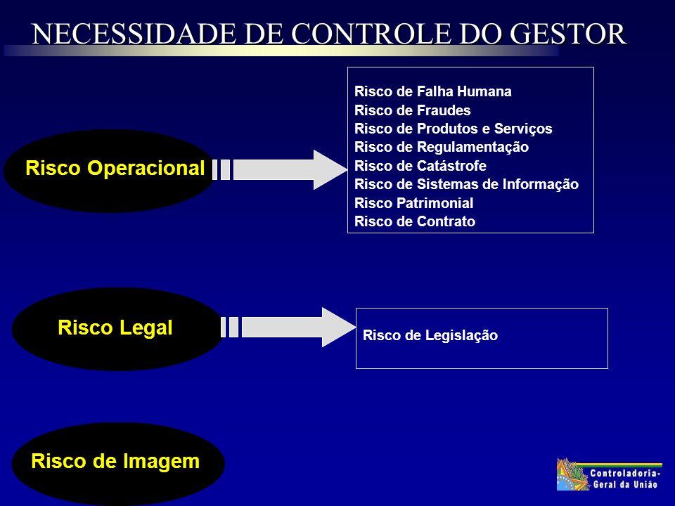 NECESSIDADE DE CONTROLE DO GESTOR Risco de Imagem Risco Operacional Risco de Falha Humana Risco de Fraudes Risco de Produtos e Serviços Risco de Regulamentação Risco de Catástrofe Risco de Sistemas de Informação Risco Patrimonial Risco de Contrato Risco Legal Risco de Legislação