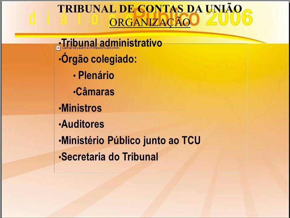 ORGANIZAÇÃO Tribunal administrativo Órgão colegiado: Plenário Câmaras Ministros Auditores Ministério Público junto ao TCU Secretaria do Tribunal