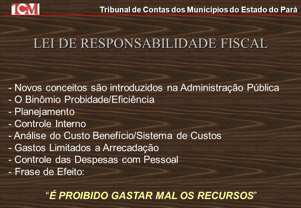 Tribunal de Contas dos Municípios do Estado do Pará LEI DE RESPONSABILIDADE FISCAL - Novos conceitos são introduzidos na Administração Pública - O Bin