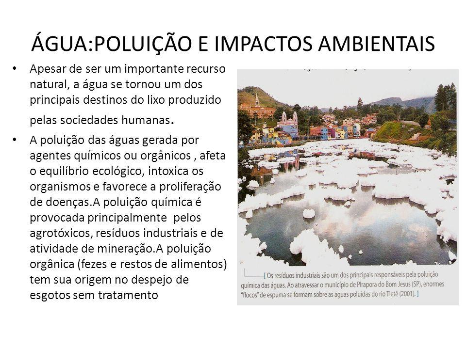 ÁGUA:POLUIÇÃO E IMPACTOS AMBIENTAIS Apesar de ser um importante recurso natural, a água se tornou um dos principais destinos do lixo produzido pelas s