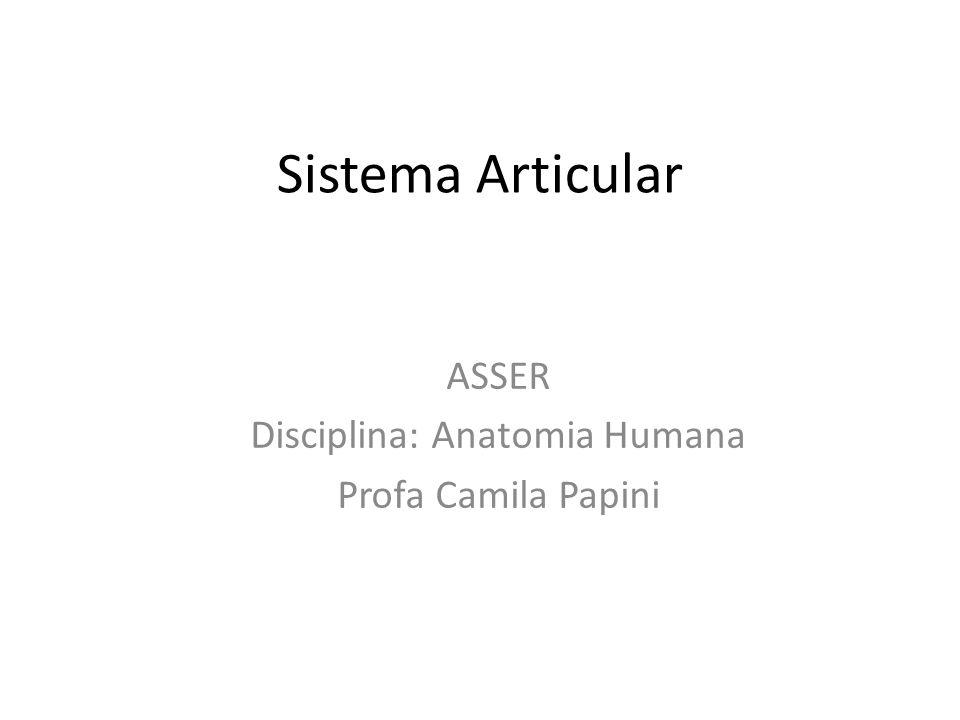 Sistema Articular ASSER Disciplina: Anatomia Humana Profa Camila Papini