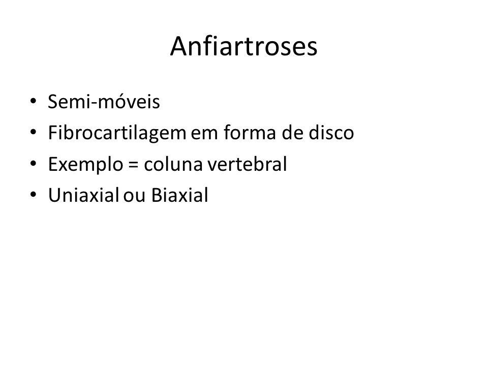 Semi-móveis Fibrocartilagem em forma de disco Exemplo = coluna vertebral Uniaxial ou Biaxial Anfiartroses