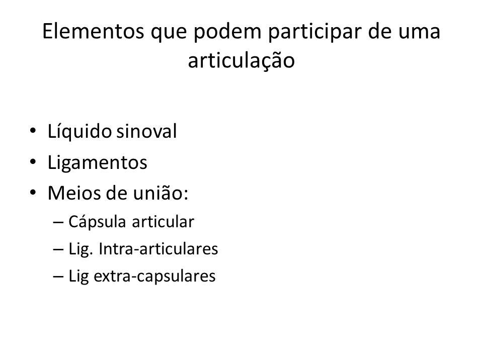 Líquido sinoval Ligamentos Meios de união: – Cápsula articular – Lig. Intra-articulares – Lig extra-capsulares Elementos que podem participar de uma a