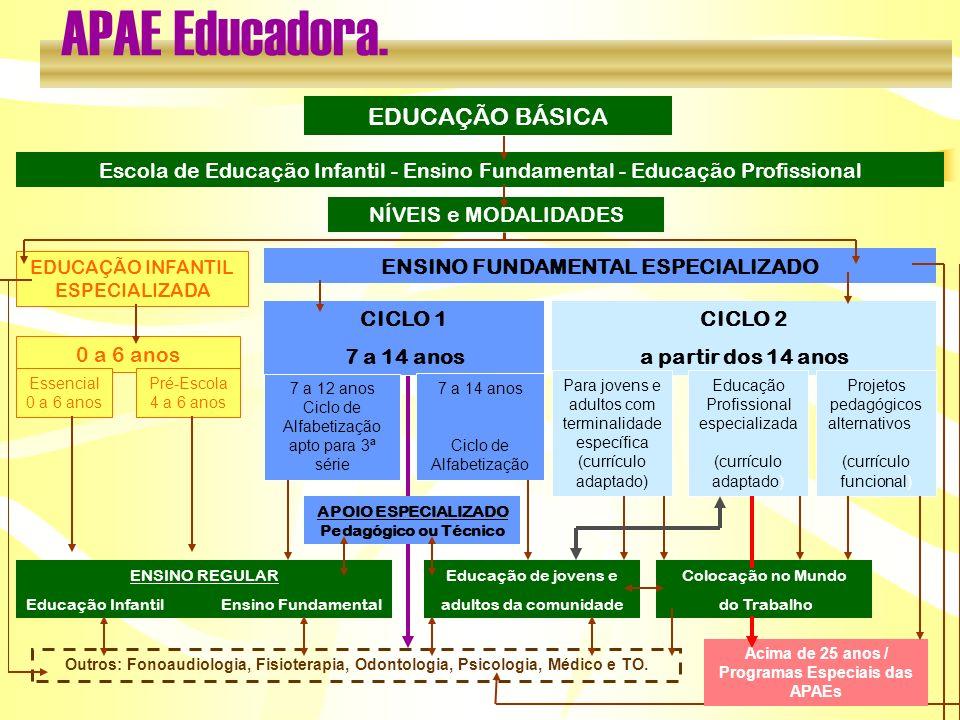 EDUCAÇÃO BÁSICA Escola de Educação Infantil - Ensino Fundamental - Educação Profissional NÍVEIS e MODALIDADES EDUCAÇÃO INFANTIL ESPECIALIZADA ENSINO F