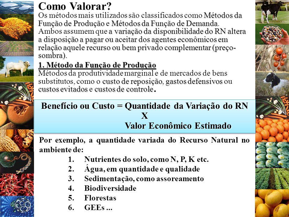 Como Valorar? Métodos da Função de ProduçãoMétodos da Função de Demanda Os métodos mais utilizados são classificados como Métodos da Função de Produçã