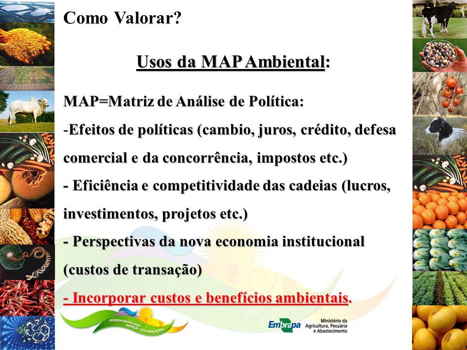 Como Valorar? Usos da MAP Ambiental: MAP=Matriz de Análise de Política: -Efeitos de políticas (cambio, juros, crédito, defesa comercial e da concorrên