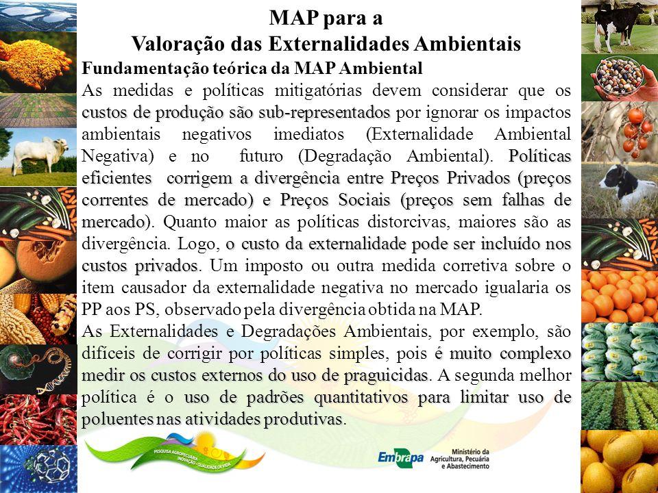 MAP para a Valoração das Externalidades Ambientais Fundamentação teórica da MAP Ambiental custos de produção são sub-representados Políticas eficiente