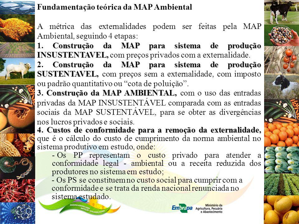 Fundamentação teórica da MAP Ambiental A métrica das externalidades podem ser feitas pela MAP Ambiental, seguindo 4 etapas: Construção da MAP para sis