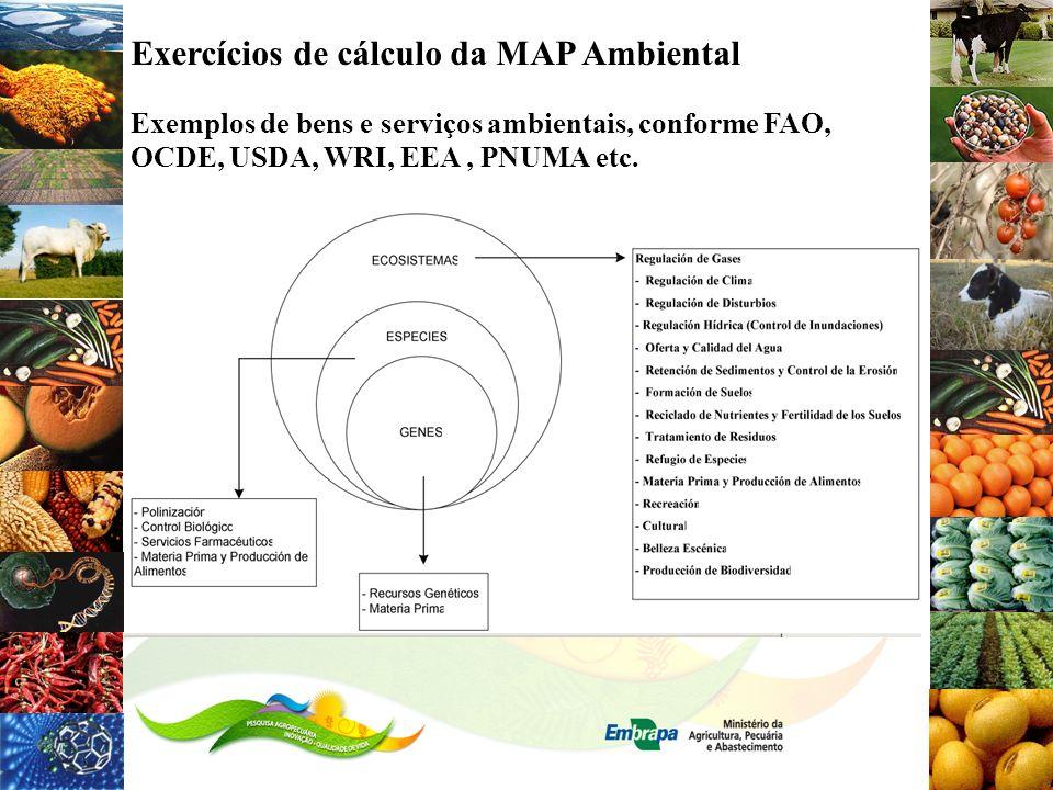 Exercícios de cálculo da MAP Ambiental Exemplos de bens e serviços ambientais, conforme FAO, OCDE, USDA, WRI, EEA, PNUMA etc.