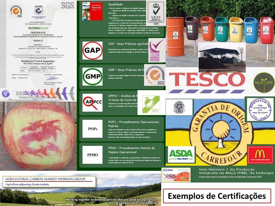 Exemplos de Certificações