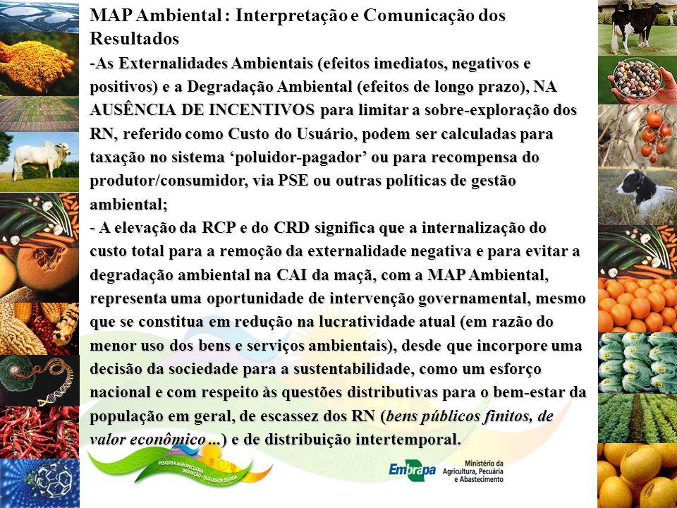 MAP Ambiental : Interpretação e Comunicação dos Resultados -As Externalidades Ambientais (efeitos imediatos, negativos e positivos) e a Degradação Amb