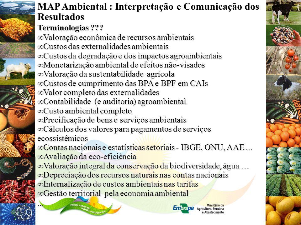 MAP Ambiental : Interpretação e Comunicação dos Resultados Terminologias ??? Valoração econômica de recursos ambientaisValoração econômica de recursos