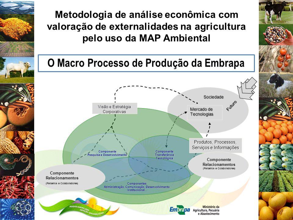 MAP para a Valoração das Externalidades Ambientais Fundamentação teórica da MAP Ambiental As falhas ambientais de mercado é um tipo de falha de mercado e ocorrem por mau uso dos RN e não pagamento dos custos totais As falhas ambientais de mercado é um tipo de falha de mercado e ocorrem por mau uso dos RN e não pagamento dos custos totais, criando sistemas de produção insustentáveis, os quais podem ser analisados pela Matriz de Análise de Política (MAP).
