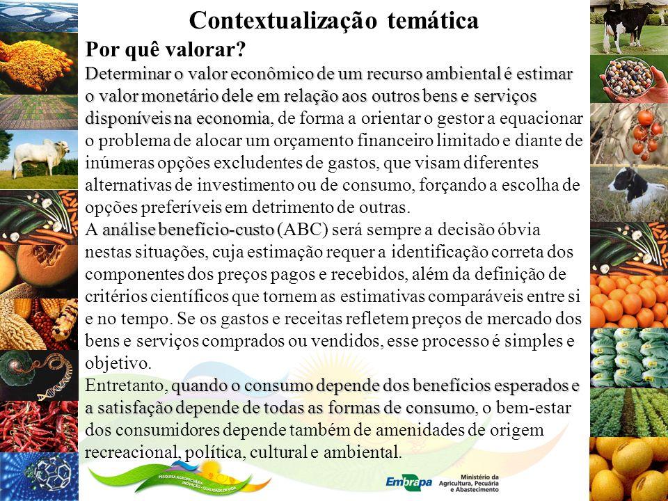 Contextualização temática Por quê valorar? Determinar o valor econômico de um recurso ambiental é estimar o valor monetário dele em relação aos outros
