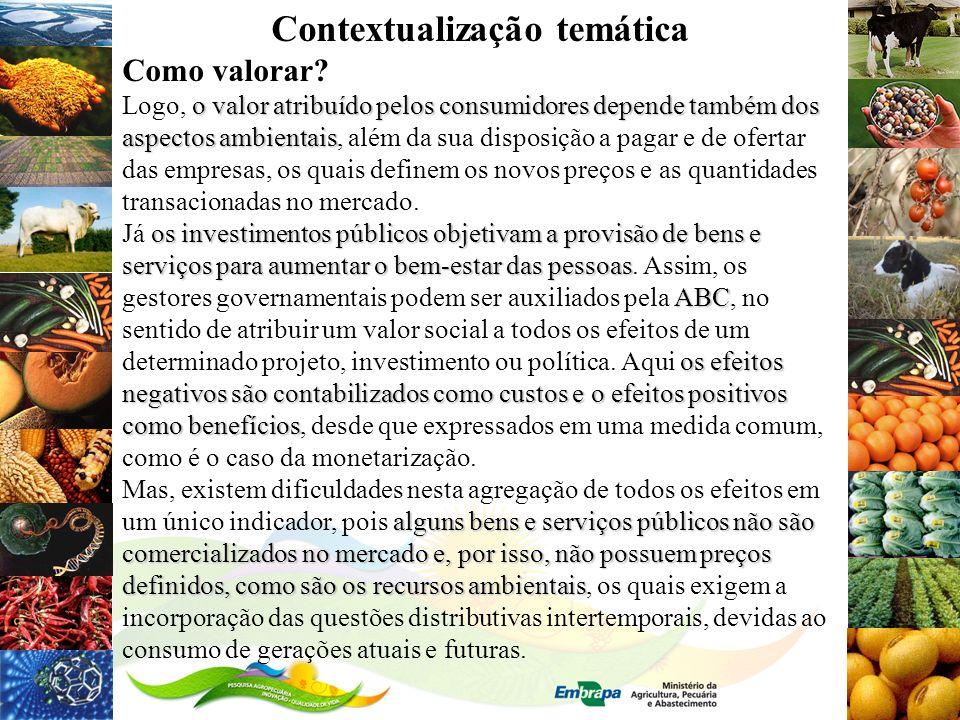 Contextualização temática Como valorar? o valor atribuído pelos consumidores depende também dos aspectos ambientais Logo, o valor atribuído pelos cons