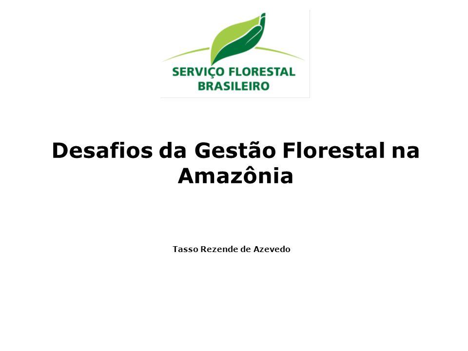 Desafios da Gestão Florestal na Amazônia Tasso Rezende de Azevedo