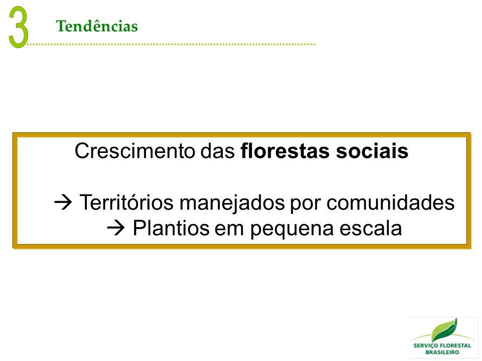 Crescimento das florestas sociais Territórios manejados por comunidades Plantios em pequena escala Tendências