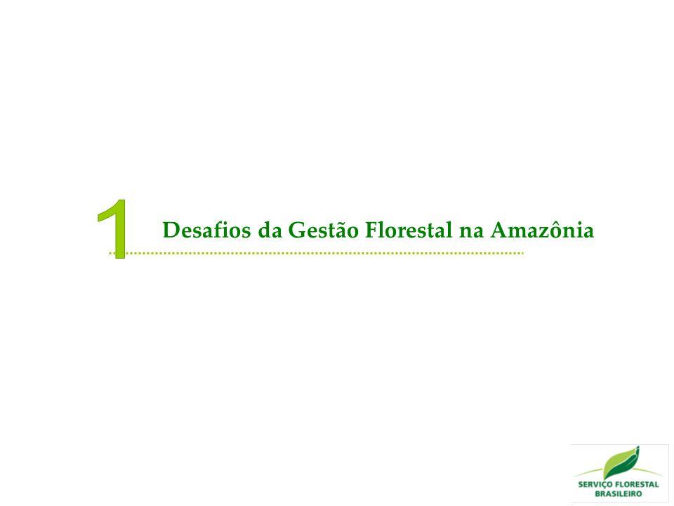 Nova geografia da produção florestal Crescimento das florestas sociais Nova Economia da Floresta Gestão Florestal compartilhada Florestas Públicas Tendências