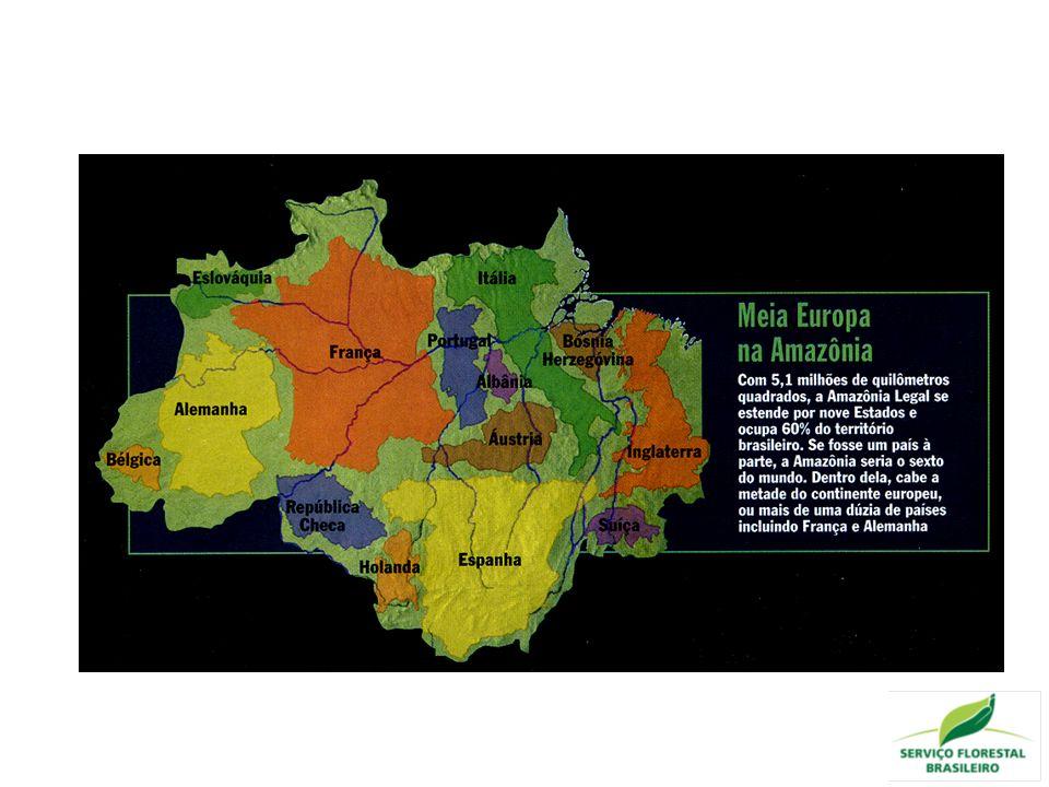 Nova geografia da produção florestal Interiorização e especialização dos segmentos das cadeias produtivas de base florestal Integração florestas, agricultura e pecuária Tendências
