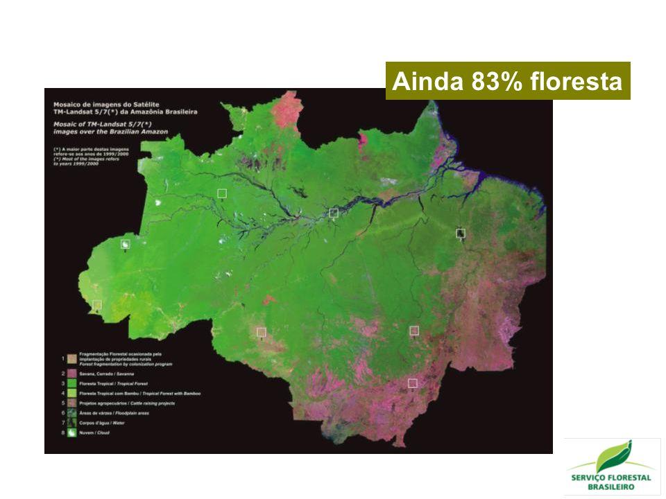 Ainda 83% floresta