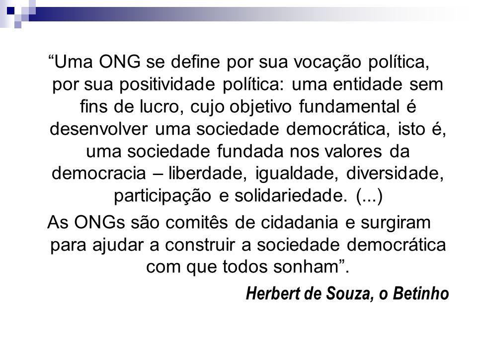 Uma ONG se define por sua vocação política, por sua positividade política: uma entidade sem fins de lucro, cujo objetivo fundamental é desenvolver uma