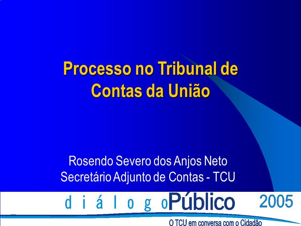 Rosendo Severo dos Anjos Neto Secretário Adjunto de Contas - TCU Processo no Tribunal de Contas da União