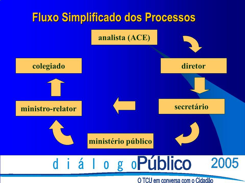 analista (ACE) diretor secretário ministério público ministro-relator colegiado Fluxo Simplificado dos Processos